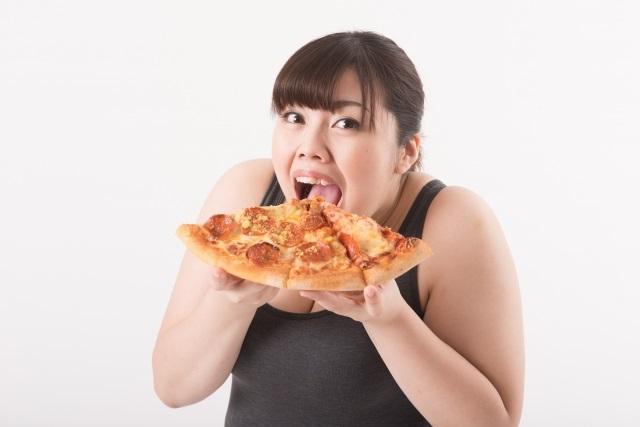 「マイクロダイエット」ってどんな商品?