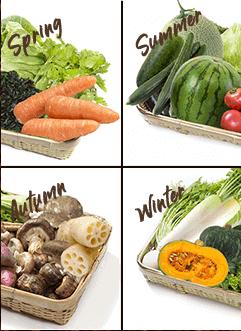 優光泉 季節によって野菜が違う